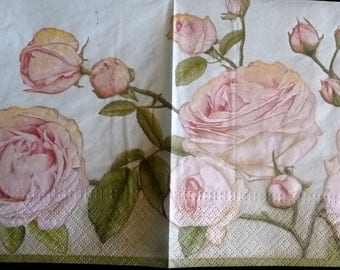 Paper towel roses on light green background