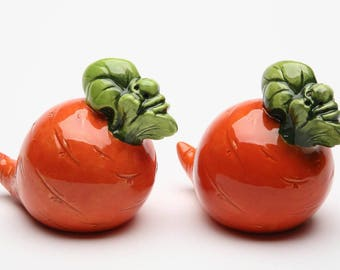 Carrot Salt and Pepper Shaker Set (20841)