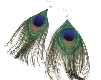 Earrings - peacock feathers