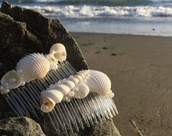 Shell hair combs