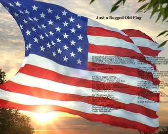 16 x 16 poster Just a Ragged Old Flag
