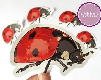 Ladybug Sticker -Animal stickers,Back to school,Ladybug decal,Insects art,Kids planner stickers,Preschool art,Animal lover gift