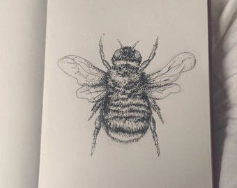 Bee Pen and Ink Print