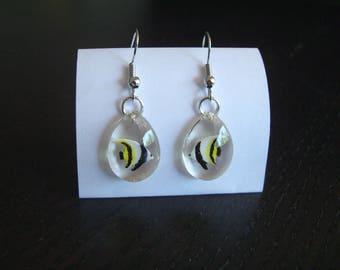 Teardrop Earrings, tropical fish resin made by hand