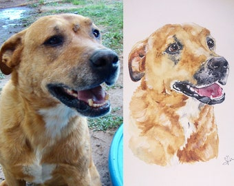 8x10in Custom Pet Portrait Watercolor