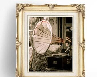 Vintage Poster, Vintage Print, Vintage Printable Art, Gramophone, Antique Objects, Vintage Images, Digital Download, JPG Image, Gramophone