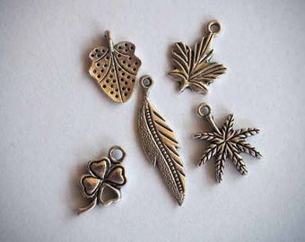 lot 5 charms, seashell and starfish, silver, 15mm to 20mm