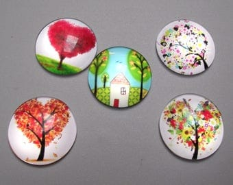 5 tree of life 25 mm glass cabochons.