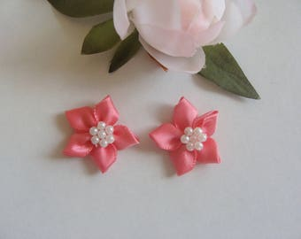 Set of 2 Color Ribbon flower appliques rose pale diameter 3 cm