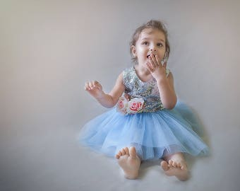 Baby girl dress, Toddler fancy pageant dress, silver and blue for baby girl, tutu dress, flower girl dress