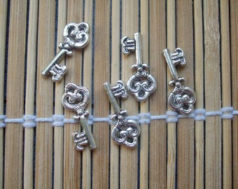 5 silver metal key fobs
