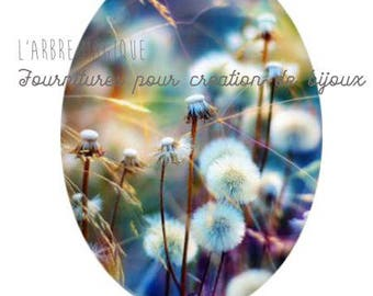 Oval cabochon 18 x 25 mm pissentlit dandelion flower romantic 1825c518