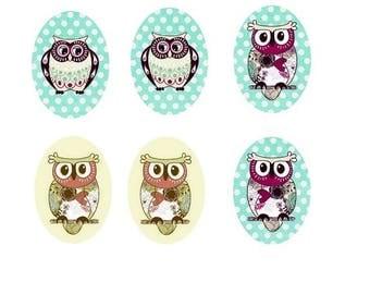 "13x18mm, ""OWL"", 3 pairs"