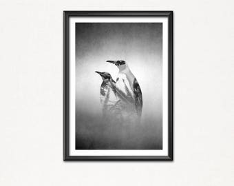 Paradise Penguin-Bird of paradise-poster image-Art print-Penguin picture-Penguin Figure-Penguin figurines-birds-palm trees