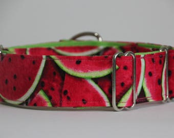 "Greyhound - Watermelon 1.5"" Martingale Collar"