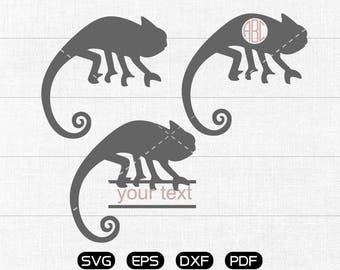 Chameleon Svg, Chameleon Clipart, Monogram Frame cricut, cameo, silhouette cut files commercial & personal use