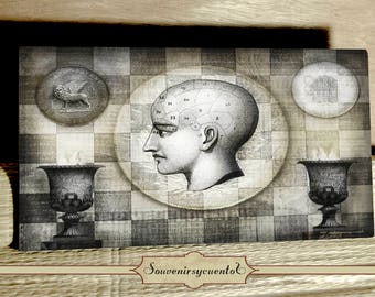 Venetian coins and a head illustration