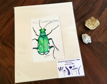 6-spotted Tiger Beetle Original Watercolor Painting