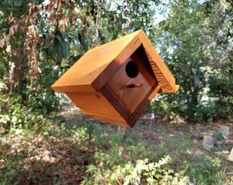 Hanging Bluebird House