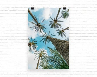 Photo paper poster - Wall Art - Palm trees - Tropical Poster - Vivid Poster