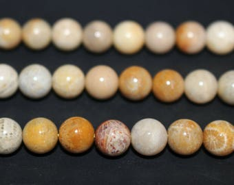 15 Inches Full strand,Natural Fossil Coral Beads round 6mm 8mm 10mm beads wholesale,loose beads,semi-precious stone