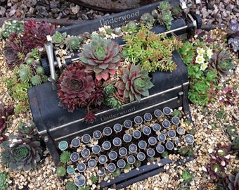 Planted Underwood Typewriter