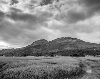 Black & White image of Ochil Hills, Scotland