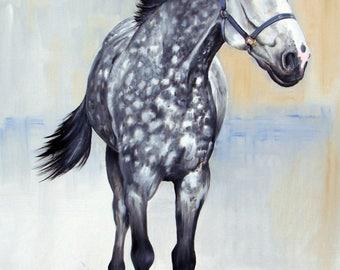 horse portraiture