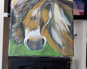 Horse recreation
