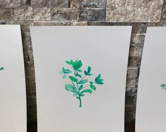 Love of Herbs: Tyme•Basil•Rosemary