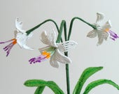 French Beaded Flowers New Zealand Rock Lily Renga Lily