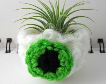 Tiny Lime Green Eyeball Air Plant Pot