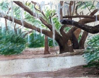 Tree With Spanish Moss original watercolor on handmade paper