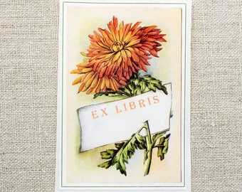autumn mum book plates - floral bookplate stickers - Ex Libris - chrysanthemum bookplates - bookworm for her - custom bookplate - fall gift