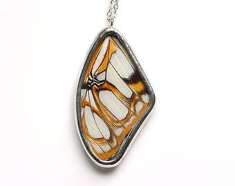 Real Butterfly Wing Necklace. Real Butterfly Wing Jewelry. Real Butterfly Wing Pendant. Victorina stelenes. Malachite Butterfly.