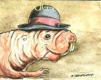 A Naked Mole Rat in a Derby - Original ACEO Painting