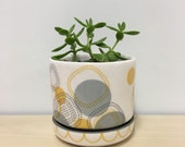 handmade porcelain planter: Dot Dot Rounded Square, Meredith Host, Grey and Yellow, succulent planter, small gift, housewarming, polka dots