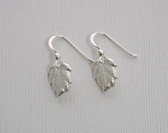 Sterling Silver Leaf Earrings - T3 - P15