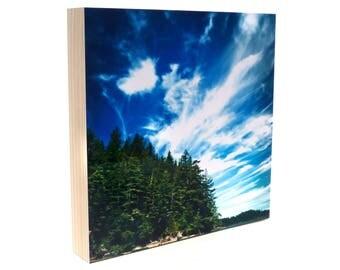 Photo Wood Long Island Willapa Bay Blue Sky Photograph, northwest, Washington art, nautical artwork, coastal decor, kayak, fir trees