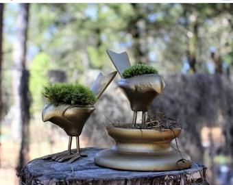 Save25% Gold Bird moss planter-Crackled gold bird-choose pillow or mood moss-Live moss planter