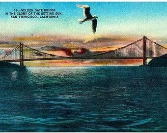 Vintage California Postcard - Golden Gate Bridge in the Setting Sun, San Francisco (Unused)
