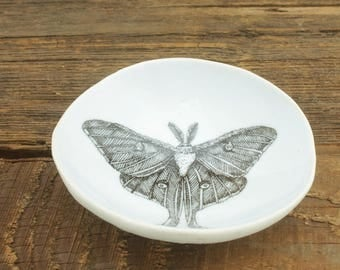 Luna Moth Woodgrain Dish by SKT Ceramics. Hand built porcelain dish, jewelry dish, olive oil dish, tapas dish by SKT Ceramics
