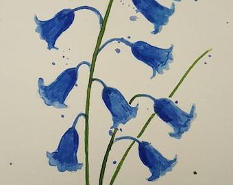 Bluebells #3