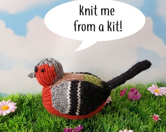 Steve the Chaffinch knit kit - cute bird knit kit, knitting pattern, yarn - perfect knitters gift for beginners
