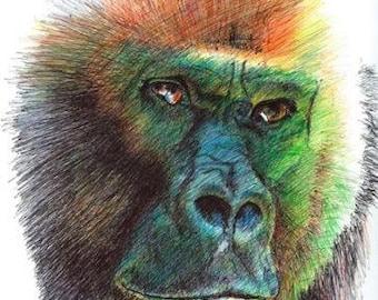 Gorilla Original Colored ballpoint pen drawing