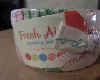 Fresh Air Jelly Roll by American Jane for Moda Fabrics
