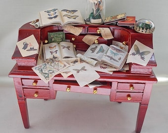 Dollhouse Miniature Filled Mahogany Desk: books and scrolls on Butterflies & Moths etc