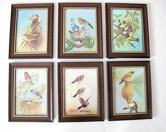 Miniature Silk Paintings of Nesting Birds by Kapil, Watercolor, 1980-Set of Six Framed