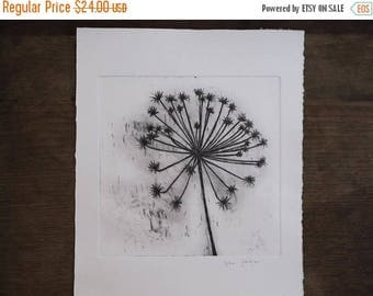 Flower in the wind Large Original Etching, Dandelion