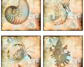 Ocean Sea Theme, Fish, Shells, Starfish, Seahorse, Instant Download, Digital Collage Sheet, 1&2 Inch Squares JPEG (17-5)